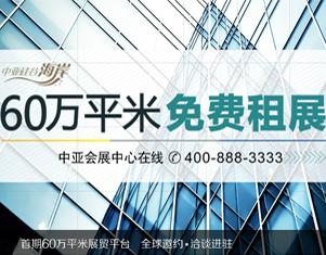 中亚电子城集团-网站建站